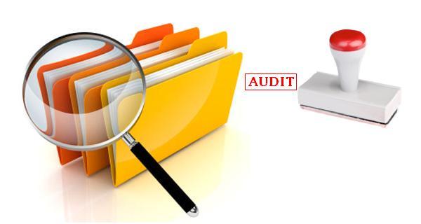 Audito planavimas ir organizavimas