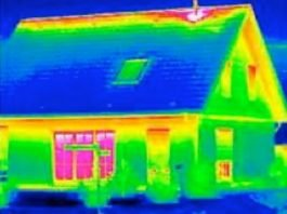 termografine nuotrauka